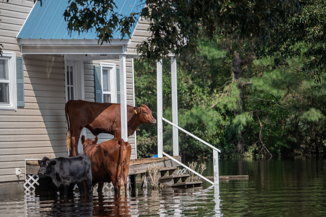FEMA's New National Risk Index Identifies the Communities Most at Risk for Natural Hazards