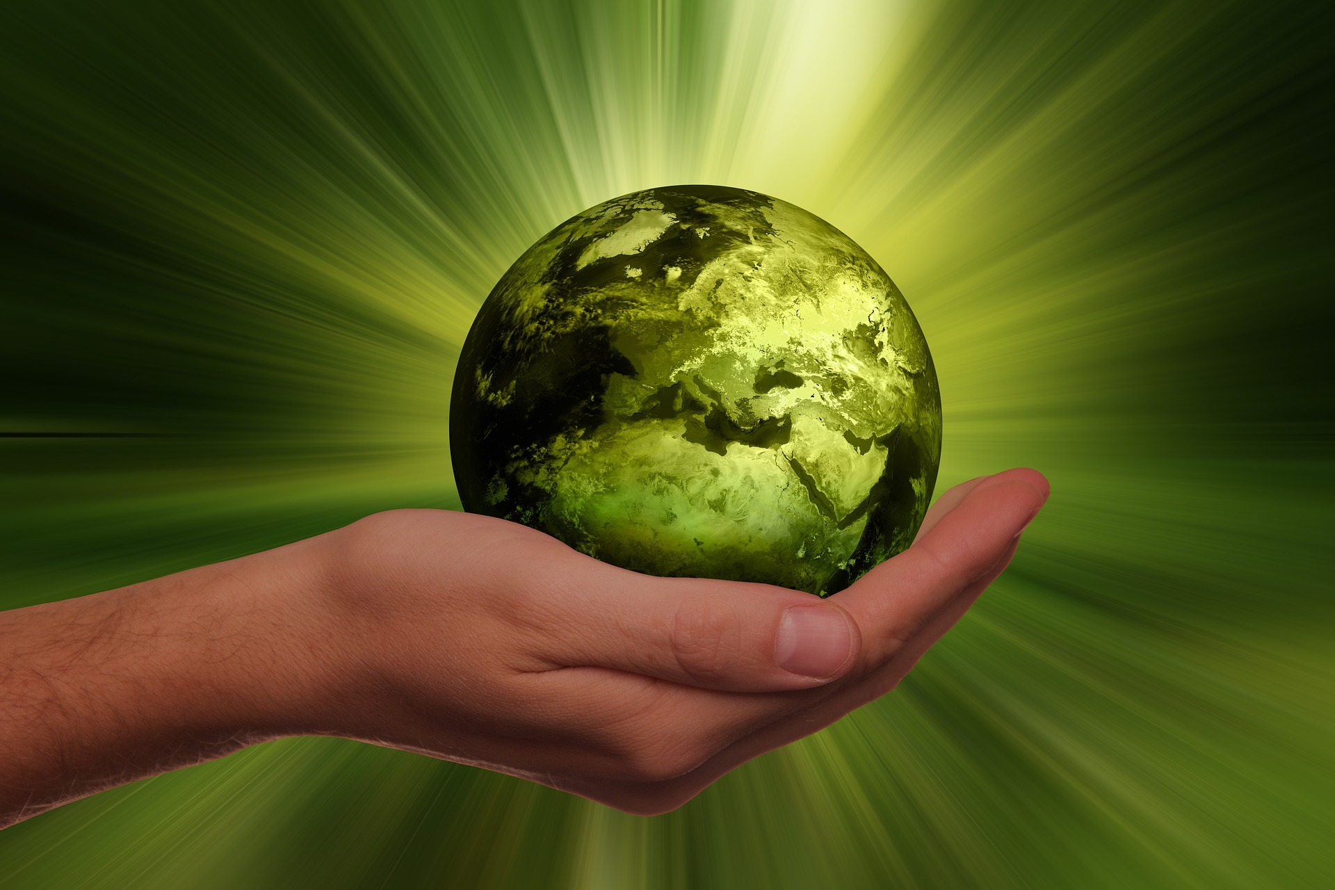 Sustainability-Focused B2B Marketplaces: Young and Growing